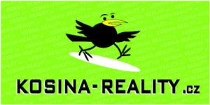 Kosina Reality